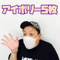 【アイボリー5枚セット】洗えるマスク