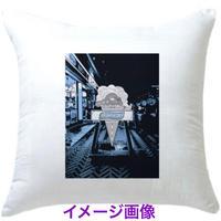 【受注期間6/26〜7/2】Ice cream cushion