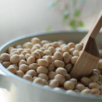 無農薬大豆トヨマサリ6kgセット 送料無料