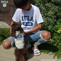 [UCLA-0373] UCLA 6.2oz半袖Tシャツ
