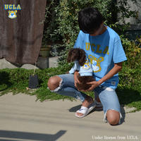 [UCLA-0376] UCLA 6.2oz半袖Tシャツ
