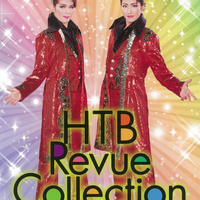 チームハート HTBレビューコレクション DVD