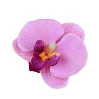 可愛い胡蝶蘭、コチョウラン髪飾りヘアアクセサリーC0018800ー2n-s