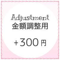 金額調整用 +300円