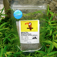 【水出しコーヒー】 ブラジル モンテ・アレグレ (中煎り) 3パックセット