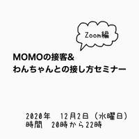 2020年12月2日 MOMOのセミナーのチケット