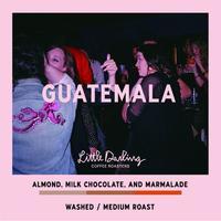 GUATEMALA  WASHED200g