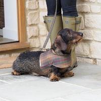 防水犬用ハーネス - Mutts & Hounds(UK)