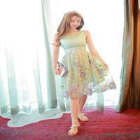 韓国ドレス 韓国ワンピース ノースリーブ 刺繍 結婚式 パーティー リゾート 旅行 花柄 膝丈 ミディアム FS014601