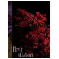 野村佐紀子写真集「Flower」