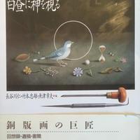 白昼に神を視る 新装改訂普及版 / 長谷川潔 著
