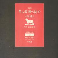 限定版 角よ故国へ沈め / 小川国夫 限定186部