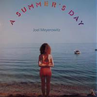A SUMMER'S DAY / Joel Meyerowitz