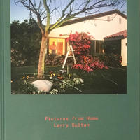 Pictures from Home / Larry Sultan  [古書]