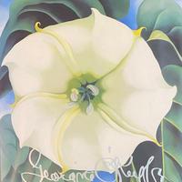One Hundred Flowers / Georgia O'keeffe