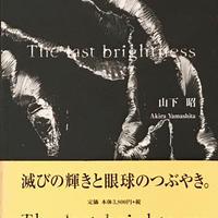 The last Brightness / 山下昭 献呈サイン入り