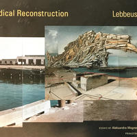 Radical Reconstruction / Lebbeus Woods