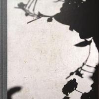 BLUME / Collier Schorr