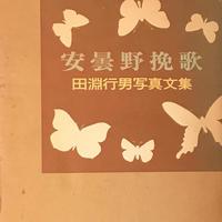 田淵行男 写真文集 安曇野挽歌