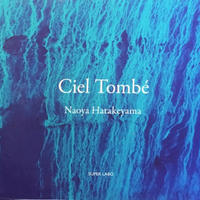 Ciel Tombe / Naoya Hatakeyama (畠山直哉)  占星術師 THE ASTROLOGER / ・Sylvie Germain 2冊組