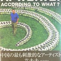 according to what? / Ai Weiwei