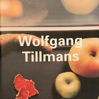 Wolfgang Tillmans  Contemporary Artists
