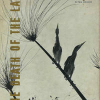 THE DEATH OF THE LAKE / PETER MEROM