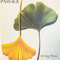 Passage / Irving penn