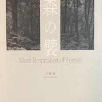 森の襞 / 志鎌 猛