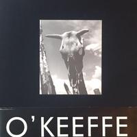 Georgia O'keeffe: The Artist's Landscape / Todd Webb