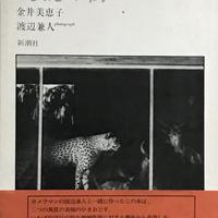 既視の街 / 金井美恵子・写真 渡辺兼人
