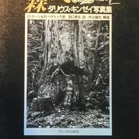 森へ / ダリウス・キンゼイ写真集