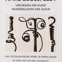 Urformen der Kunst Wundergarten der Natur / Karl Blossfeldt