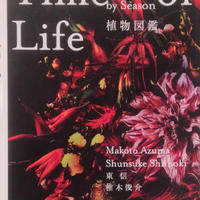 Time Of Life Encyclopedia of Flowers 植物図鑑 / 東信 椎木俊介