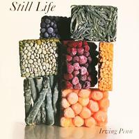 Still Life  / Irving Penn