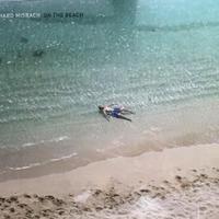 ON THE BEACH / Richard Misrach