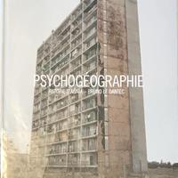 PSYCHOGEOGRAPHIE / ANTOINE D'AGATA - BRUNO  LE DANTEC