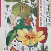 原色精密 日本森林樹木図譜 / 白沢保美 著