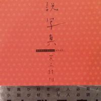 小説写真  / 荒木経惟
