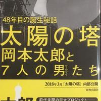 48年目の誕生秘話 太陽の塔 岡本太郎と7人の男たち  /  平野暁臣