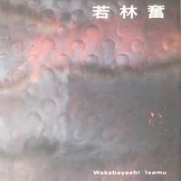 若林奮 Isamu Wakabayashi 2002年 豊田市美術館 展示会図録