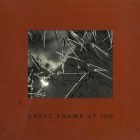 Ansel Adams at100