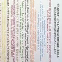 公共性を再演する|作品の解説を23種類の言語に翻訳する 丹羽良徳の2004年から2012年の介入プロジェクト / 丹羽良徳