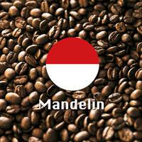 マンデリンコーヒー  500g