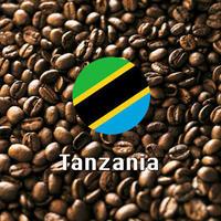 タンザニアコーヒー 500g