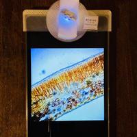 高性能タブレット付きモバイル顕微鏡キット k-hw5l