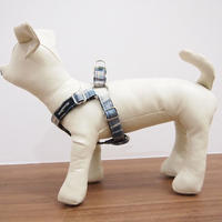 WagWear Madras Collar HARNESS  Blue