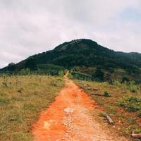 ベトナムコーヒー農園ツアー