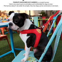 Charlies Backyard Original Easy Harness (イージーハーネス)M size