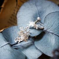 ノリウツギアジサイのイヤリング*Silver